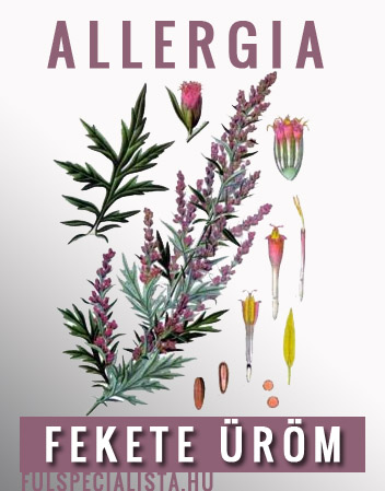 allergia fekete urom